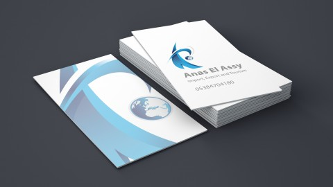 Logo and Business cards for Tourist Company