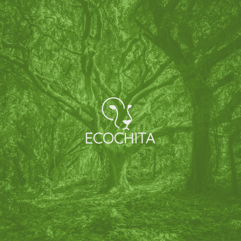 Ecochita - Logo & Identity Design