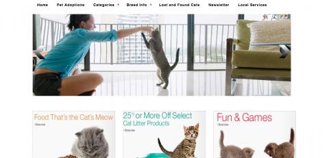 (Ecommerce Website (freelance