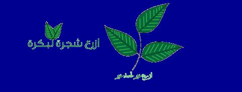 لوجو لأحد الأنشطة الخيرية فى قطر