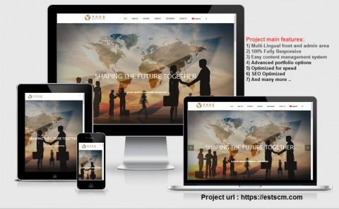 تطوير وبرمجة موقع الشركة الصينية ESTSCM