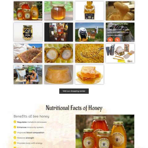 صفحة البداية LandingPage لموقع انجليزي عن نحل العسل ومنتجاته