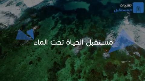 مستقبل الحياة تحت الماء