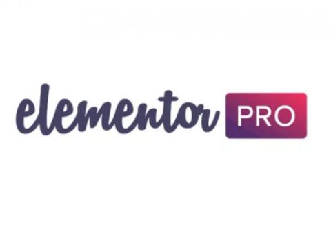 تصميم المواقع الالكترونيه للشركات بأستخدام اداة Elementor pro