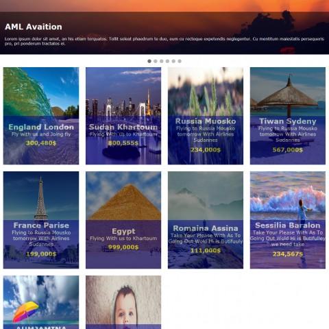 موقع ويب لشركة خدمات طيران