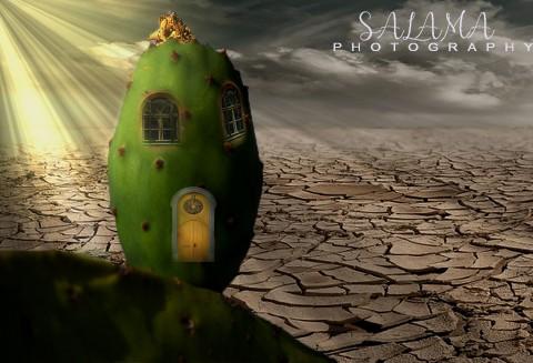 بيت في فاكهة التين الشوكي