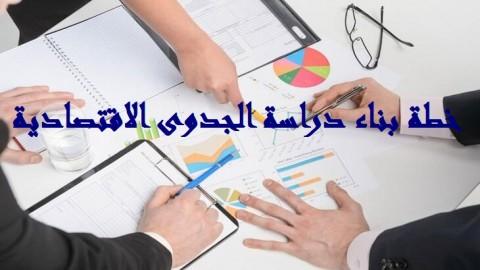 دراسة الجدوى  الإفتصادية التفصيلية