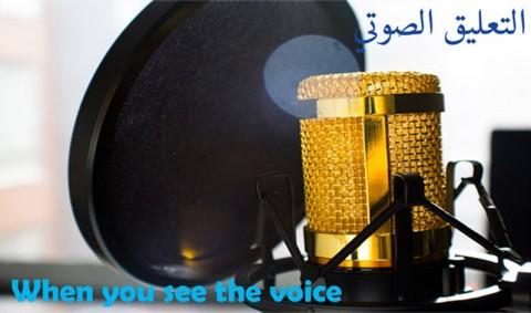 التعليق الصوتي ومونتاج الفيديو voice over