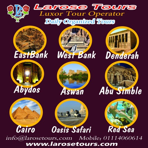 فلاير لشركة سياحة larosetour