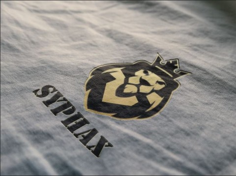 تصميم شعار لشركة ملابس