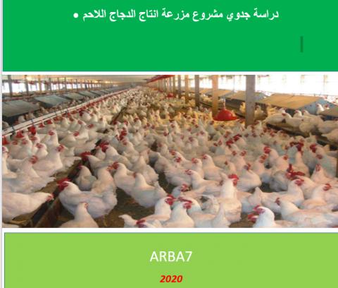 دراسة جدوى لمزرعة دجاج لاحم بطاقة 10 مليون طائر سنويا بالكويت