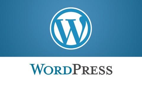 إدخال بيانات لموقع على وورد بريس باللغتين العربية والإنجليزية