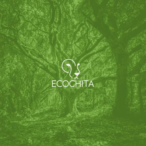 Ecochita - Logo Brand identity
