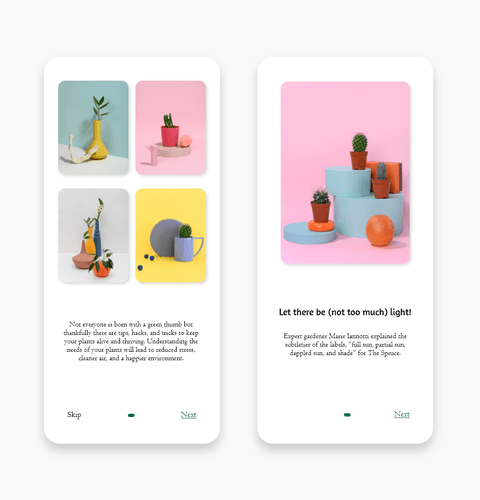 Splash UI for Plants App