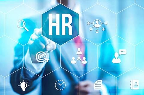 نظم الموارد البشرية HR