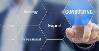 تقديم الخدمات الإستشارية والإستشارات Consulting