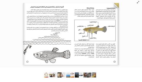 filp book لمجلة أو كتاب