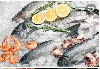 دراسة جدوي مشروع استيراد وتصدير أسماك
