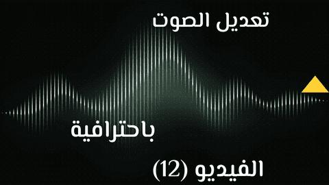 مونتاج وتعديل الصوت باحترافيه - الفيديو (12)