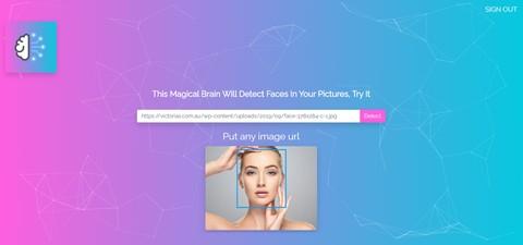 Smart brain web application