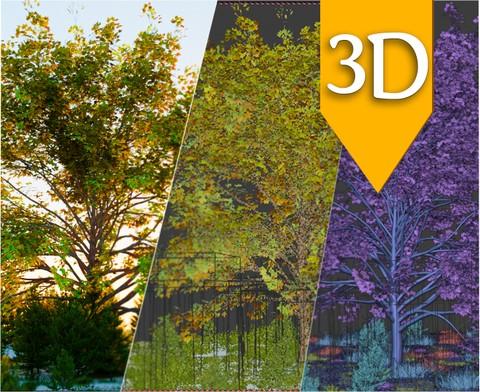3D tree concept