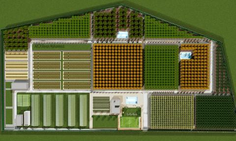 دراسة أرض زراعية استثمارية